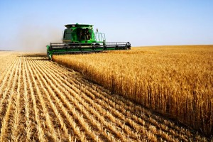 Top 10 Agriculture companies in India