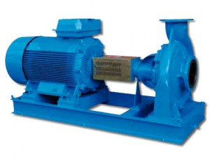 Top 10 Sea Water Pumps Manufacturers in Delhi